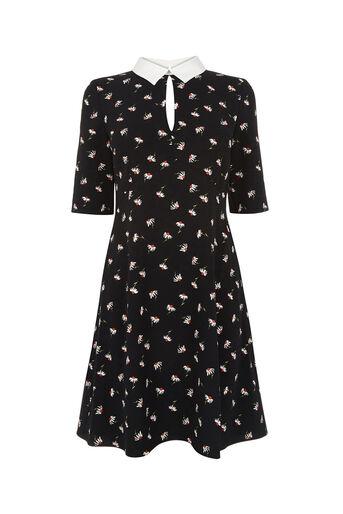 Oasis, DAISY COLLAR SHIFT DRESS Multi Black 0