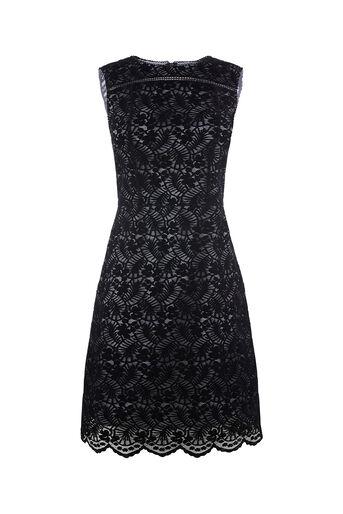 Oasis, NTU LACE LONG FLOCKED SHIFT DRESS Black 0