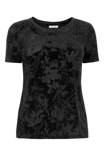 Oasis, velvet burnout tee Black 0