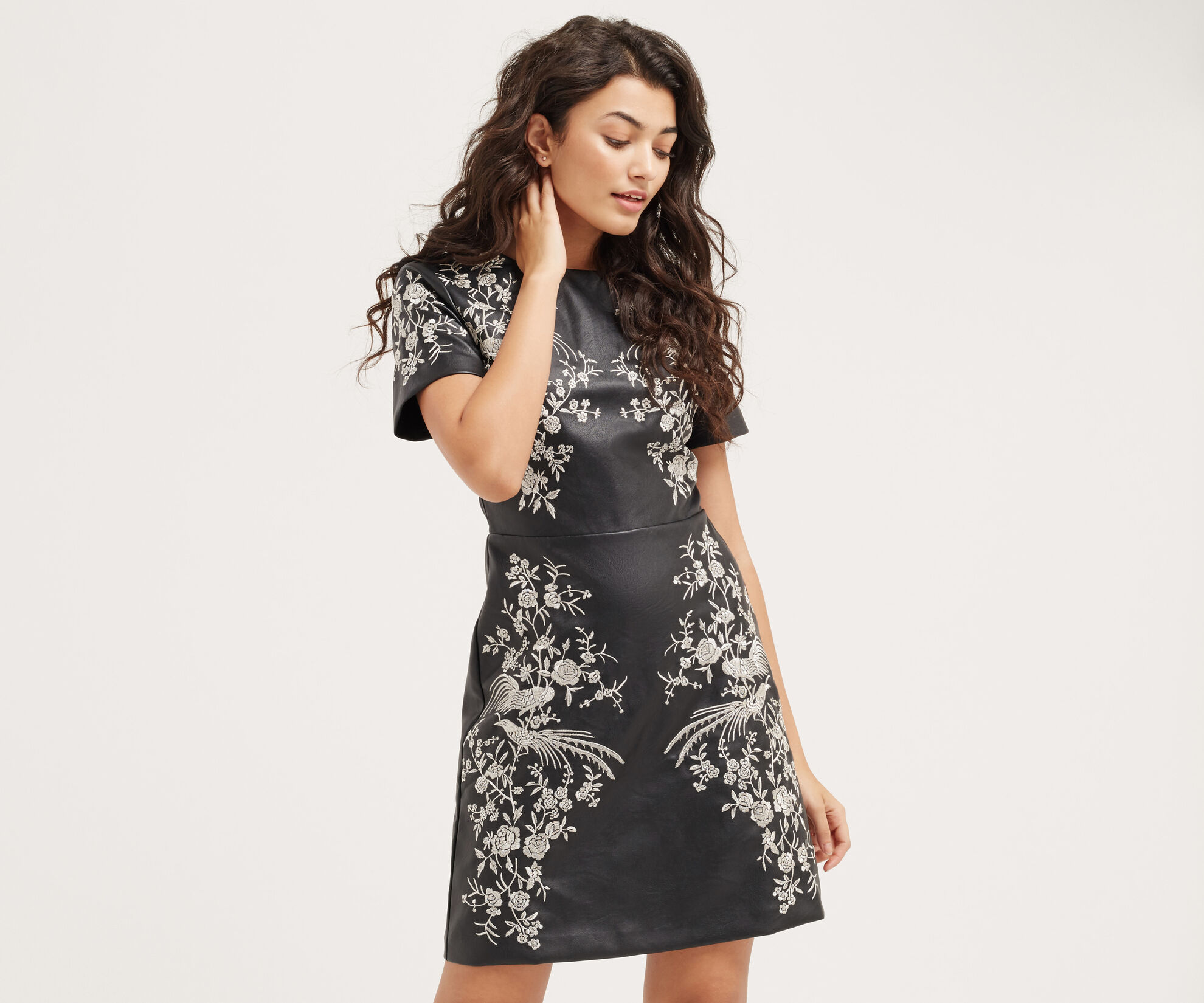 Oasis, OSAKA EMBROIDERED DRESS Multi 1