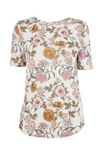 Oasis, Opium Print T-Shirt Mid Grey 0