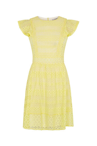 Oasis, LACE SKATER DRESS Mid Yellow 0