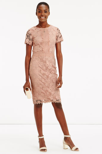 Oasis, GUIPURE LACE DRESS Natural 2