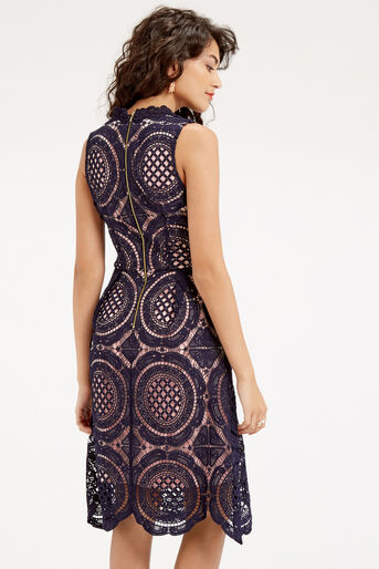 Oasis, LACE DRESS Navy 3
