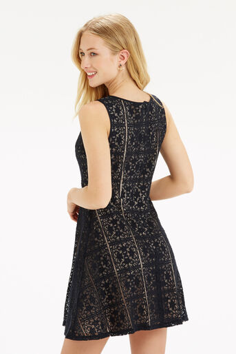 Oasis, Lace Skater Dress Mid Grey 3