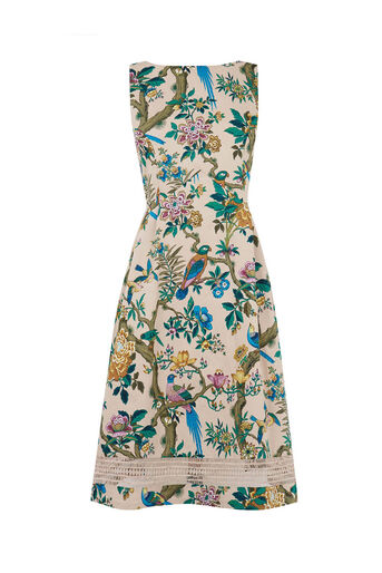 Oasis, V&A MIDI DRESS Multi 0