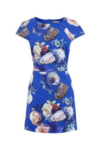 Oasis, SHORT ROSE DRESS Multi Blue 0