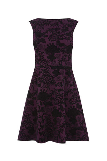 Oasis, FLOCKED SKATER DRESS Berry 0