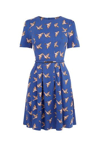 Oasis, COUNTRY BIRD SKATER DRESS Multi Blue 0