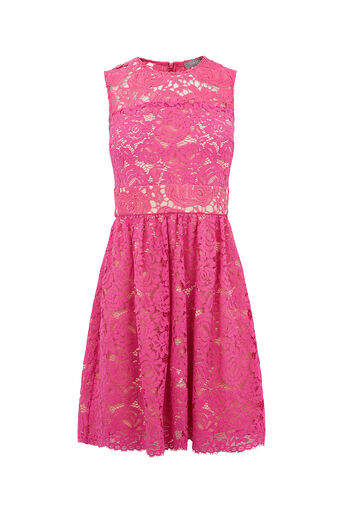 Oasis, LACE SKATER DRESS Mid Purple 0