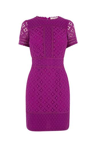 Oasis, ISLA LACE SHIFT DRESS Bright Pink 0