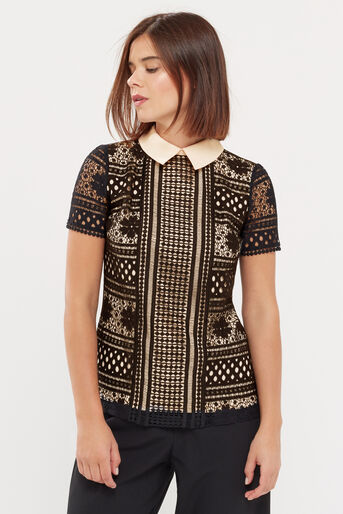 Oasis, COLLARED LACE TEE Black 1