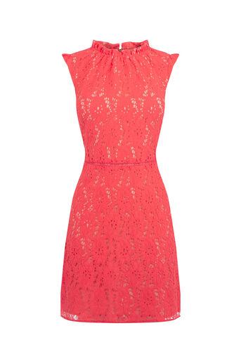 Oasis, LACE DRESS Coral 0