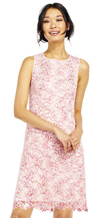 Nautilus Lace Shift Dress with Scalloped Hem