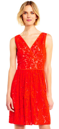 Lace Dress with Drop Waist and V-Neck