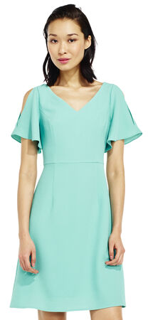 Open Shoulder Fit and Flare Dress with Flounce Sleeves