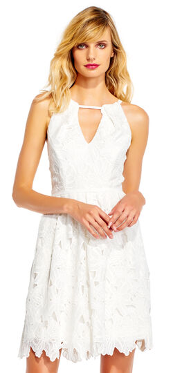 Floral Lace Fit and Flare Dress with Cutout Halter Neckline