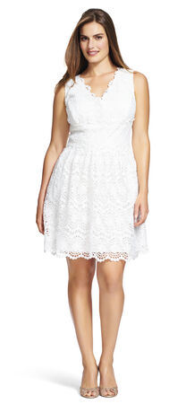 Crochet Lace Fit and Flare Dress with V-Neck