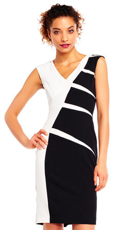Sleeveless Colorblock Sheath Dress with Exposed Zip Back