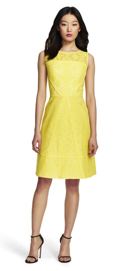 Medallion Lace Spliced Fit And Flare Dress Adrianna Papell