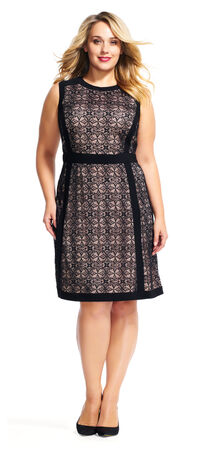 Sheer Medallion Lace Fit and Flare Dress