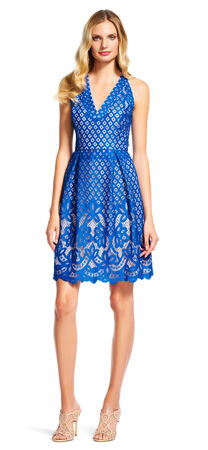 Embroidered Floral Lace Dress with V-Neck