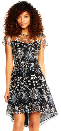 Floral Embroidered High Low Dress with Sheer Short Sleeves