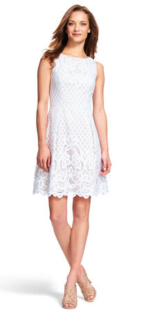 Illusion Lace Fit and Flare Dress