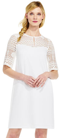 Shift Dress with Sheer Lace Neckline and Sleeves