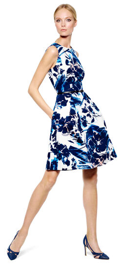 Belted Floral Fit and Flare Dress