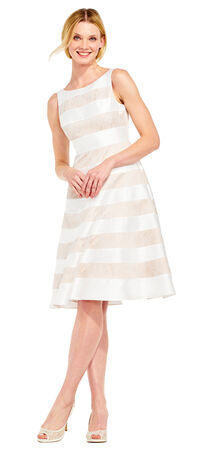 Lace Stripe Fit and Flare Midi Dress with V-Back