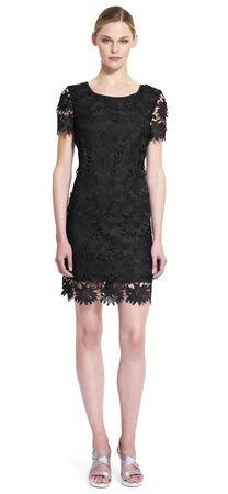 Scalloped Lace Shift Dress