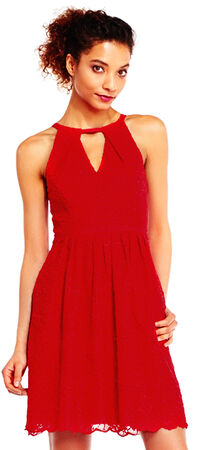 English Garden Lace Fit and Flare Dress with Keyhole Cutouts