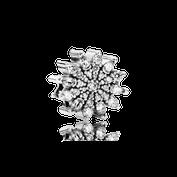 Cristal glacé, cz incolore