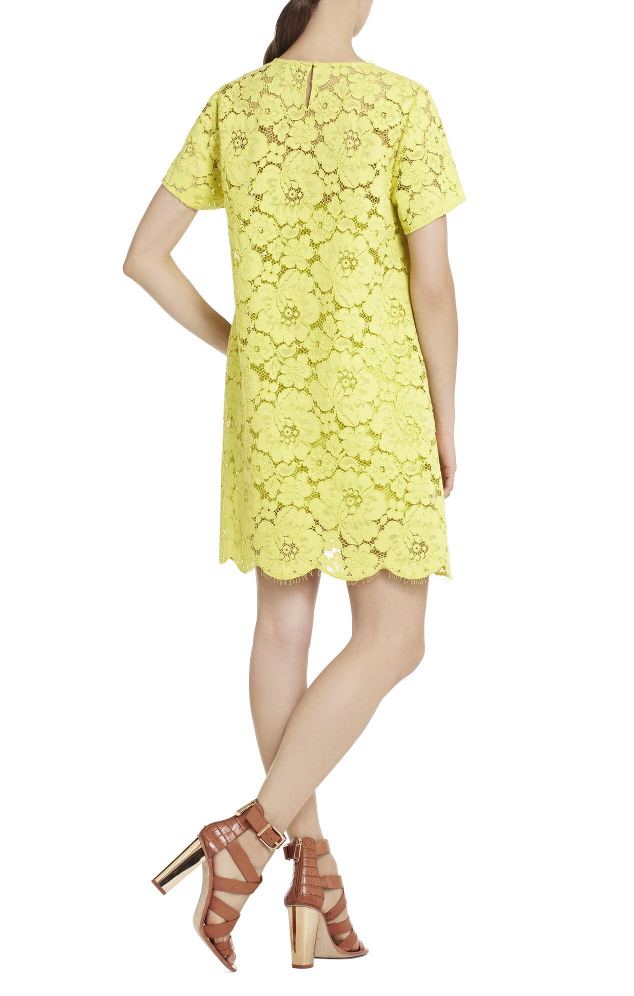 Diane Oversized Lace Dress