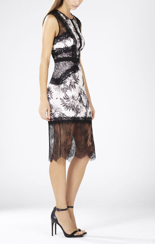 Shawna Sleeveless Round-Neck Lace Applique Dress