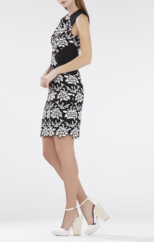 Laurine Floral Lace Dress