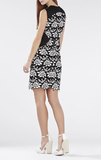 Laurine Floral Lace Dress
