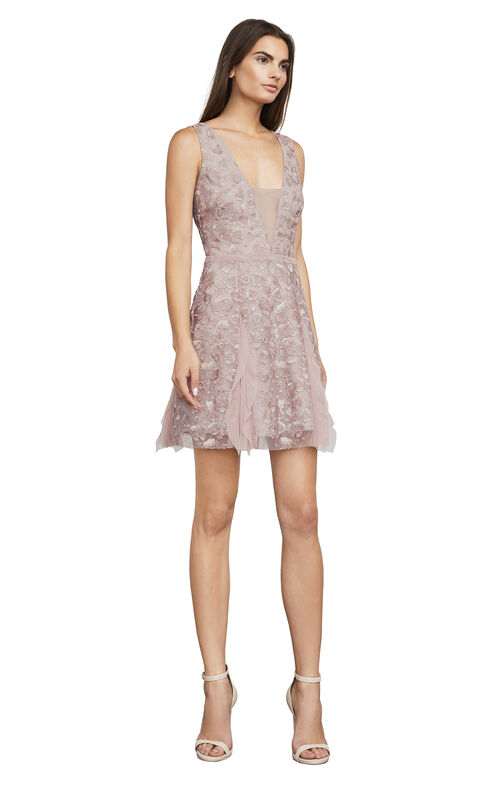 Phoebe Embroidered Tulle Dress