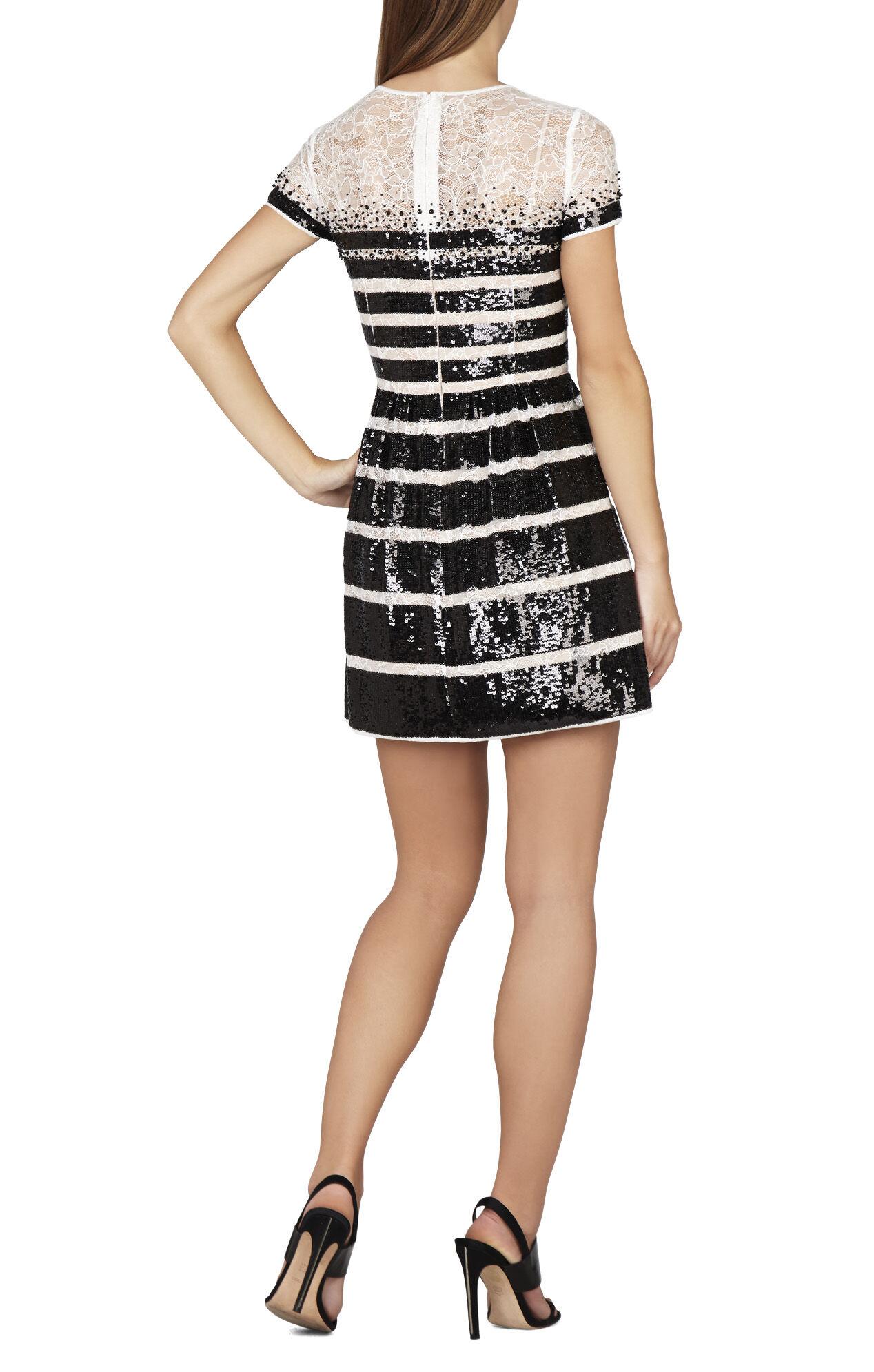 Tasi Sequin-Striped Lace Dress