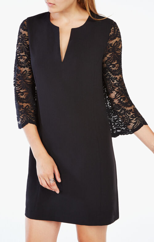 Brigitte Lace-Sleeve Dress