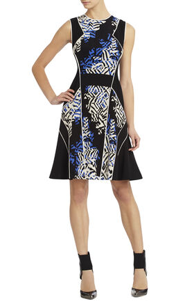 Runway Ania Print Dress