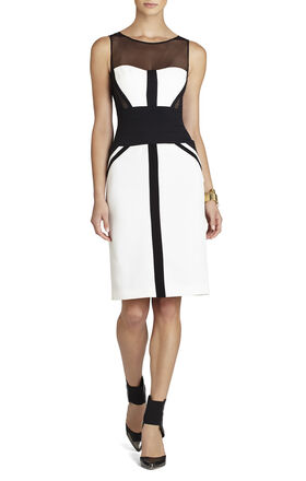 Reina Fitted Sleeveless Dress