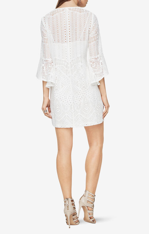 Catier Lace Dress