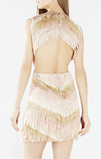 Ondria Open Back Fringe Dress