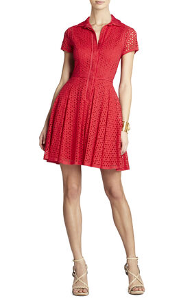 Dasha Full Skirt Button-Down Dress