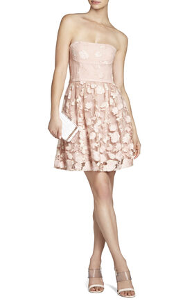 Everly Embroidered Strapless Dress