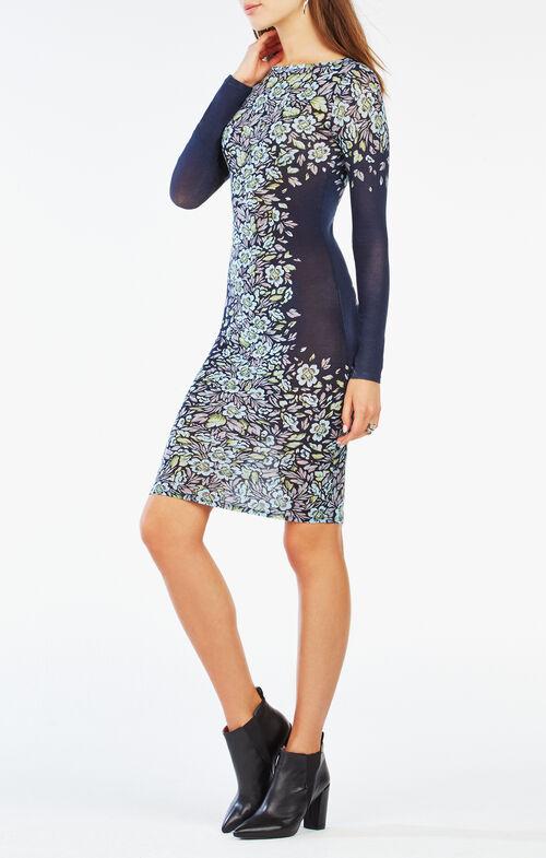 Voletta Floral Print Dress