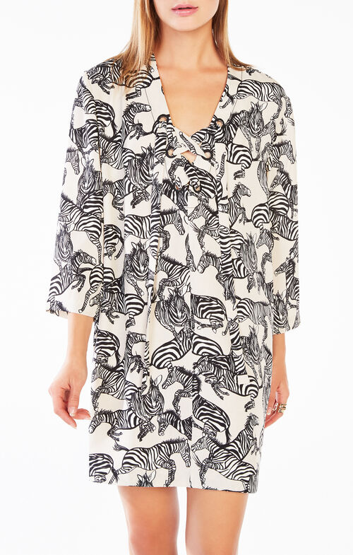 Tonya Zebra Print Tunic Dress