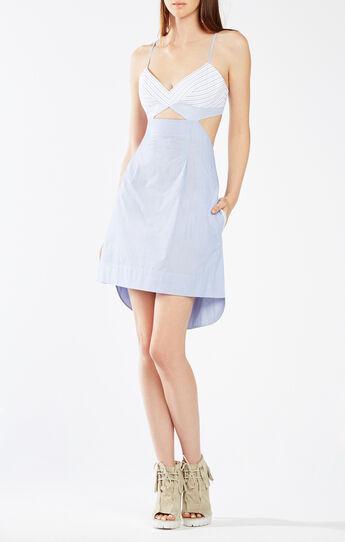 Runway Dot Dress